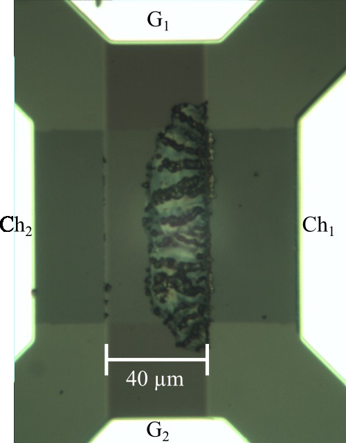 Optical micrograph of a device that burned out.